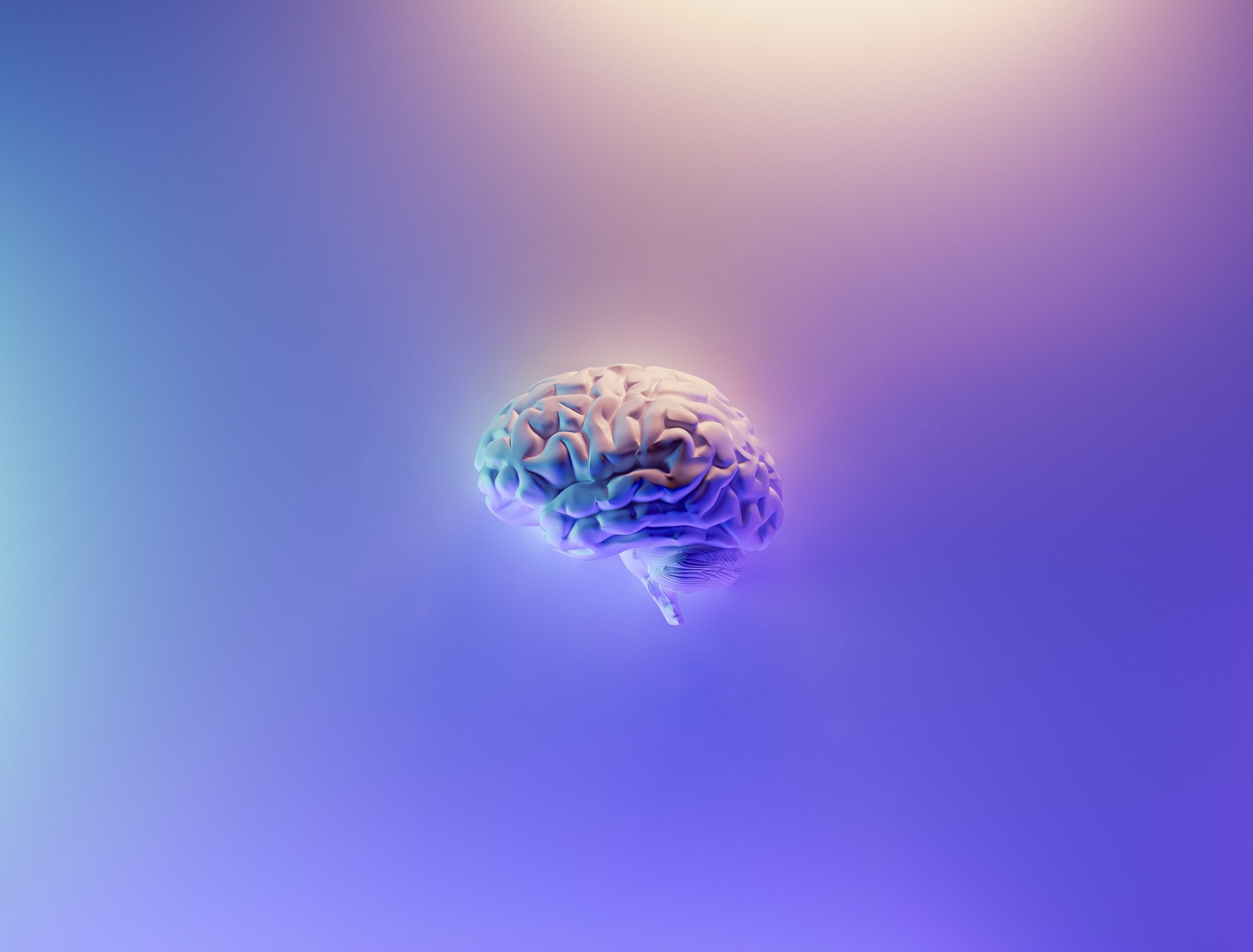 Read more about the article How Do Neurons Connect With Each Other?